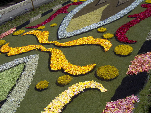Fronleichnam - Corpus Christi 2008 - La Orovata -Teneriffa - Blumenteppiche in der Altstadt