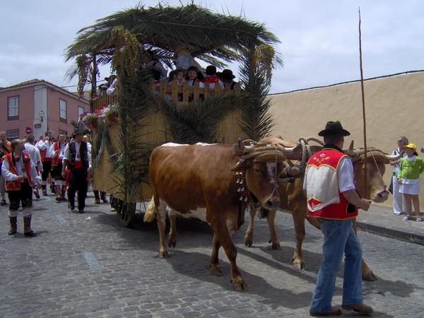Romeria 2008 von San Isidro in La Orotava, Teneriffa