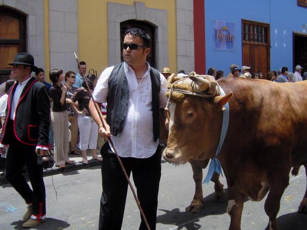 Große Romería 2008 in La Laguna auf Teneriffa