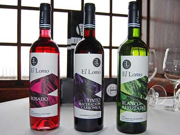 Modernes Image für edle Weine aus Tegueste.