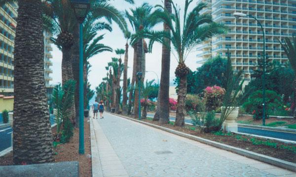 The new image could transform Puerto de la Cruz