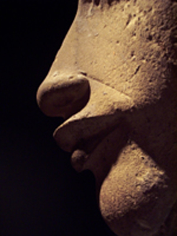 See interesting egyptian photography at the science museum