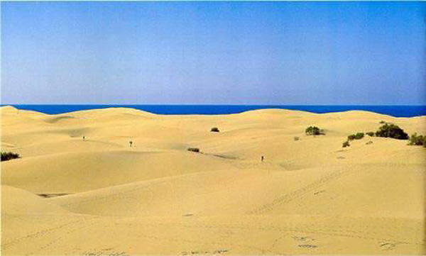 The famous dunes of Maspalomas are within the Reserve