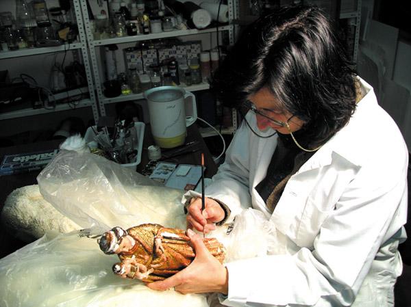 Alle defekten Teile der wertvollen Heiligenfiguren werden in sorgfältiger Handarbeit ausgebessert