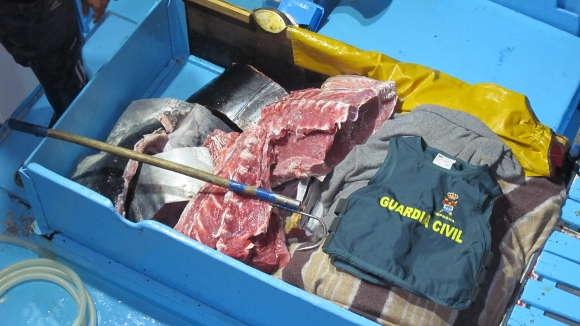 Der Fisch war bereits zerlegt, als er auf La Gomera ankam. Er wurde beschlagnahmt.