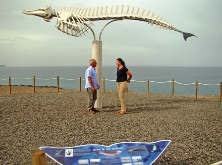 The impressive whale skeleton at El Cotillo