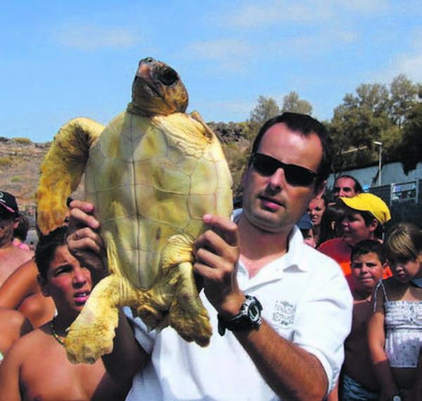 Eine der fünf Schildkröten kurz vor ihrer Entlassung in die Freiheit