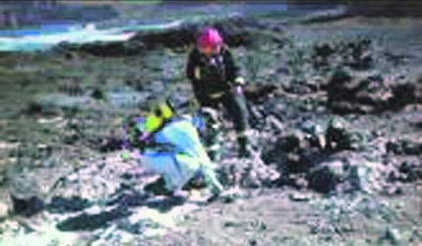 Die Feuerwehr von Santa Cruz konnte in Punta de Hidalgo 100 der 120 gesuchten Beutel sicherstellen