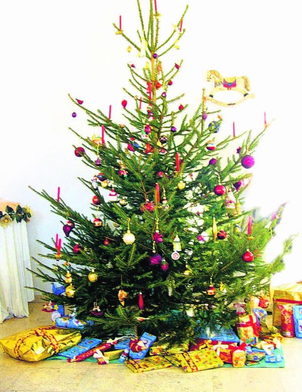 Internationales Weihnachtssymbol: der geschmückte Baum. Selbst darum kann es zum Streit kommen