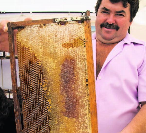 Der einzigartige Honigreichtum der Insel spiegelt sich in den zahlreichen Sorten wider.