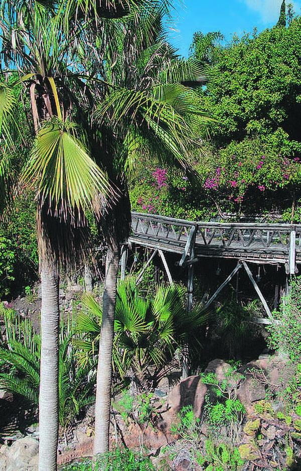 Wilde Romantik und üppige Vegetation verstärken das Dschungel-Feeling