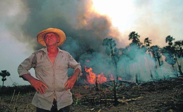 Waldbrände in Brasilien vernichten jährlich tausende Hektar Regenwald.