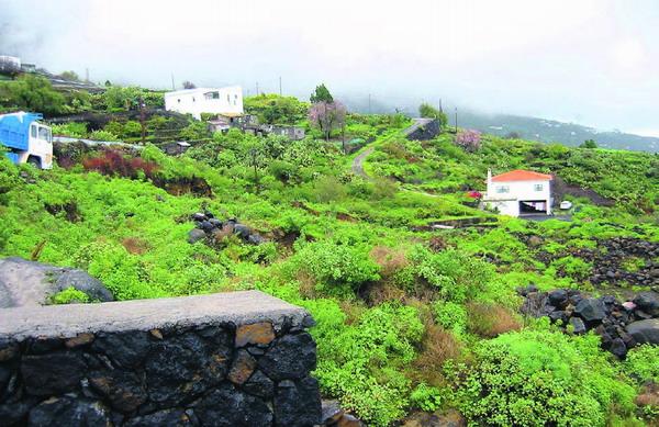 Auf dem Monte Luna in der Gemeinde Villa de Mazo sollen die 32 neuen Wohnungen gebaut werden