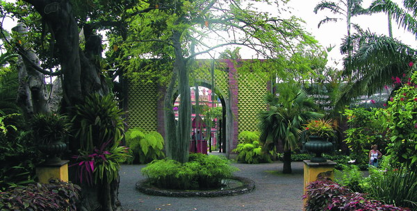 Innenansicht des Hauptportals des Jardín de Aclimatación de La Orotava