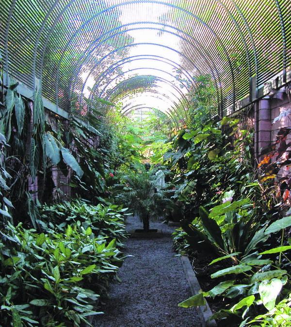 Impression aus dem Botanischen Garten