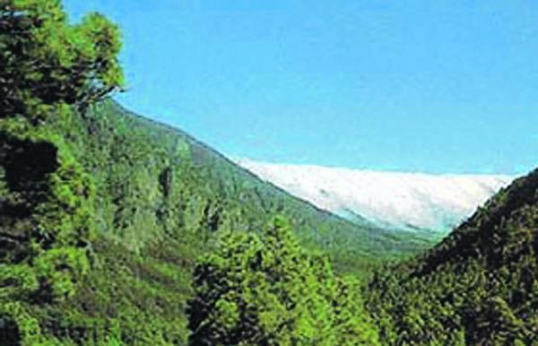 Rund 389.000 Menschen besuchten 2007 den Nationalpark Caldera de Taburiente auf La Palma