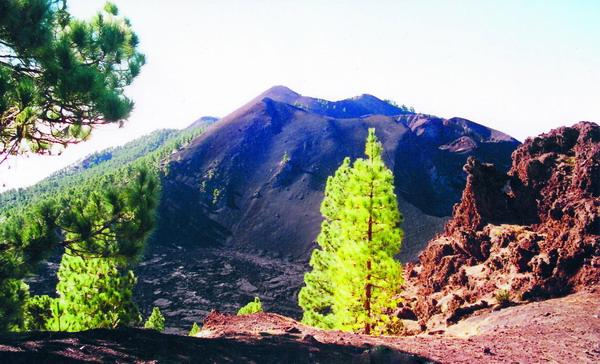 Mit Kiefern bewachsener Vulkankegel