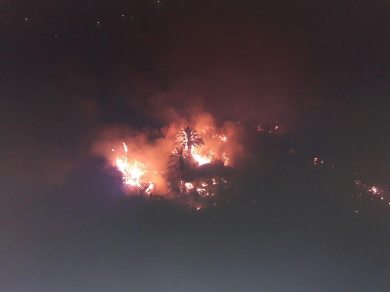 Eine Ausbreitung des Waldbrandes konnte erfolgreich verhindert werden. Häuser oder Personen kamen nicht zu Schaden.