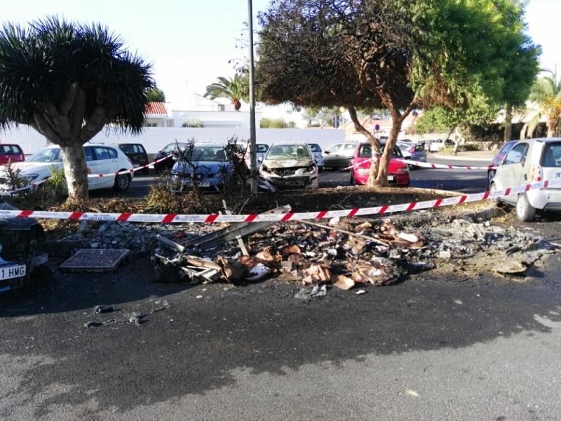 Die verbrannten Überreste des Containers, der betroffenen Autos und eines Baumes.