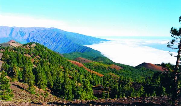 """Blick von der Vulkanroute aus zum Kraterbeginn der """"Caldera de Taburiente"""""""