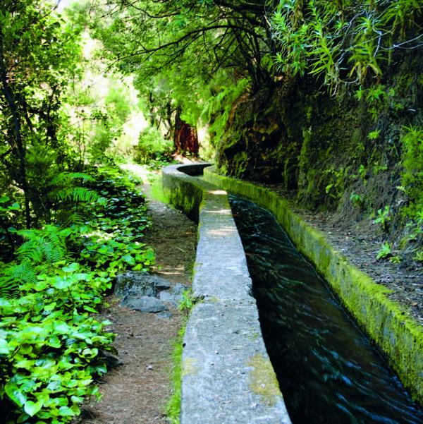 """Wasserkanal im Gebiet von """"Marcos y Cordero"""" oberhalb von Los Tilos"""