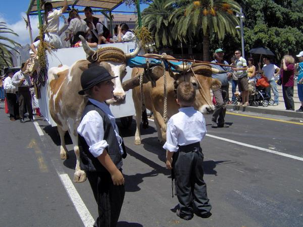 Paseo Romero - Santa Cruz - Teneriffa