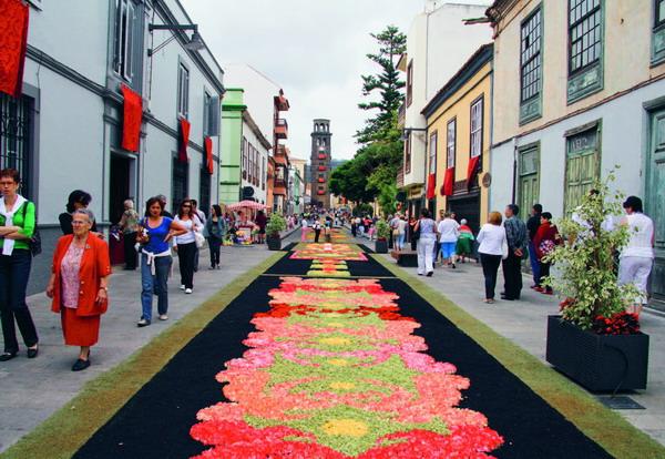 Blumenteppiche säumen die Straßen der Nordmetropolen