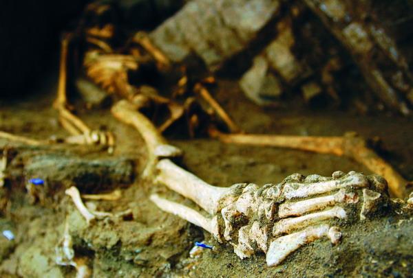 1.500 Jahre waren diese Knochen unter der Erde begraben, ehe sie vor rund drei Jahren wieder ans Tageslicht kamen
