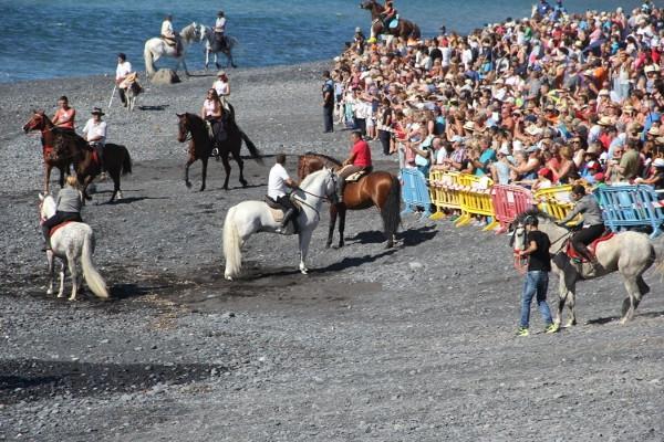 Ein großes Fest, das Reiter und Pferde, Alt und Jung, Gläubige und Schaulustige sowie Einheimische und Besucher vereint.