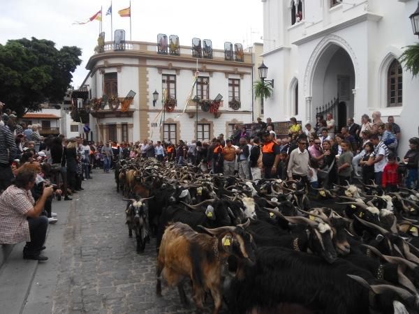 Fiesta de San Antonio Abad in Los Silos.