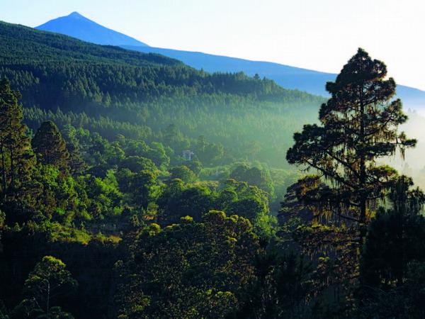 Die Cañadas del Teide – einer der größten Naturschutzgebiete der Kanaren