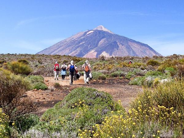 Immer donnerstags geht es in den Teide-Nationalpark am Fuße des Gipfels.