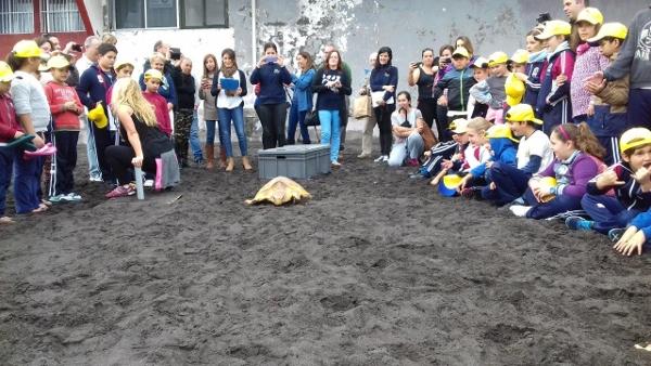 Die Kinder standen der Schildkröte auf dem Weg ins Meer Spalier.