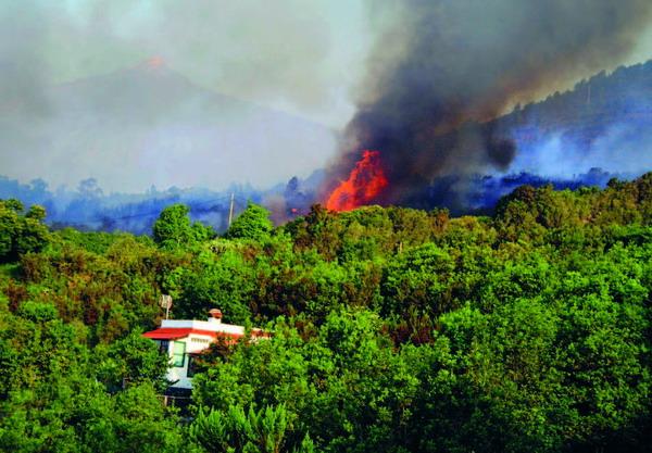 Auch bei den Waldbränden im Sommer 2007 war Brandstiftung teilweise die Ursache