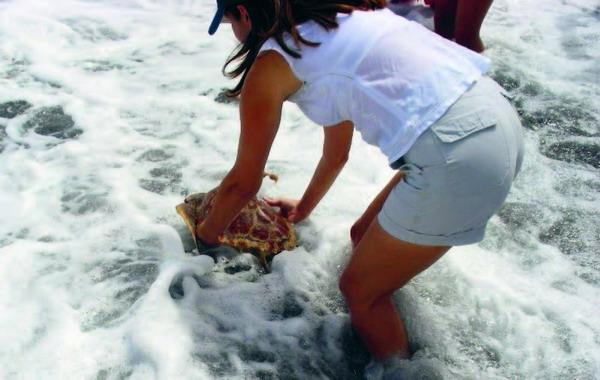 """Die Bürgermeisterin Lola Padrón legte selbst mit """"Hand an"""", um den Meeresbewohner zu verabschieden"""