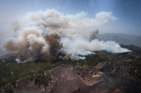 Fast fünf Hektar Wald und Bergwelt waren von dem Brand betroffen.