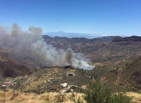 Glücklicherweise konnte der erste Waldbrand dieses Sommers schnell unter Kontrolle gebracht werden.