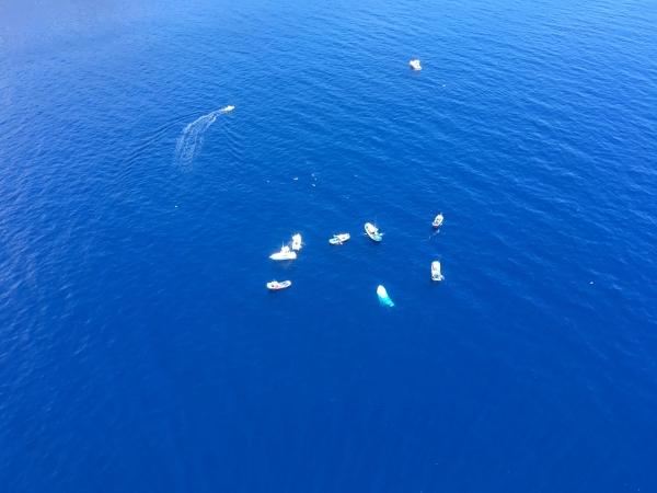 Die Besatzung wurde von Booten, die in der Gegend waren und zu Hilfe kamen, in Sicherheit gebracht.