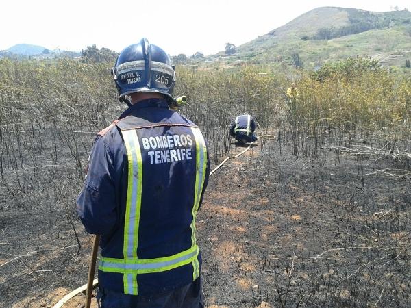 Feuerwehrleute konnten am Mittwoch brennendes Gestrüpp am Camino Escaño bei La Esperanz, in der Gemeinde El Rosario, rechtzeitig löschen. Nicht immer ist es so einfach, einen Brand unter Kontrolle zu bekommen.