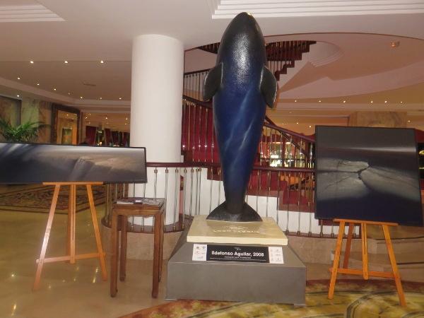 """Das Orca-Modell """"Atravesando Mares"""" sowie je ein Foto und Gemälde des Künstlers waren in der Hotellobby ausgestellt."""