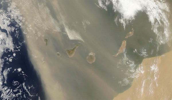 Welche Auswirkungen hat der Calima-Wind auf Mensch und Natur? Thema einer NASA-Studie in Zusammenarbeit mit Wissenschaftlern vom Tropeninstitut Teneriffas.