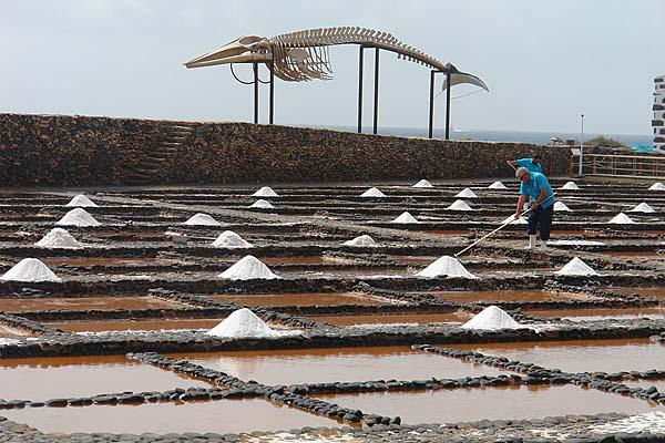 Salzkonzentration Meerwasser