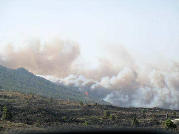Verheerender Waldbrand im Süden von La Palma