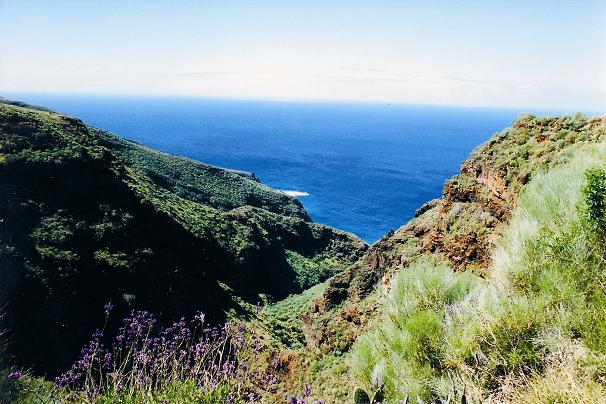 Barranco (Trockenschlucht) mit üppiger Vegetation im Norden La Palmas