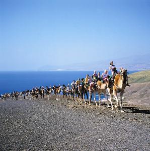 Urlaubslaune zwischen Strandpanorama und Nomadenfeeling