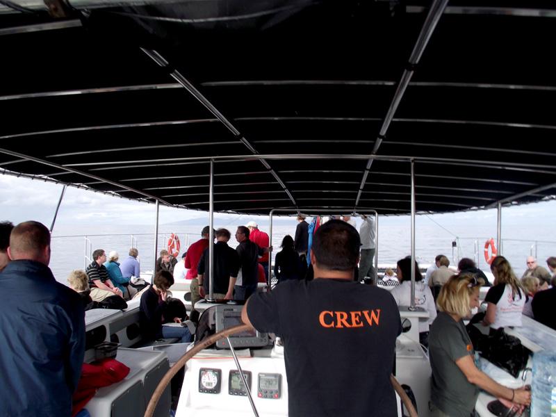 Wal-Fahrt: Der Steuermann muss viele Regeln beachten