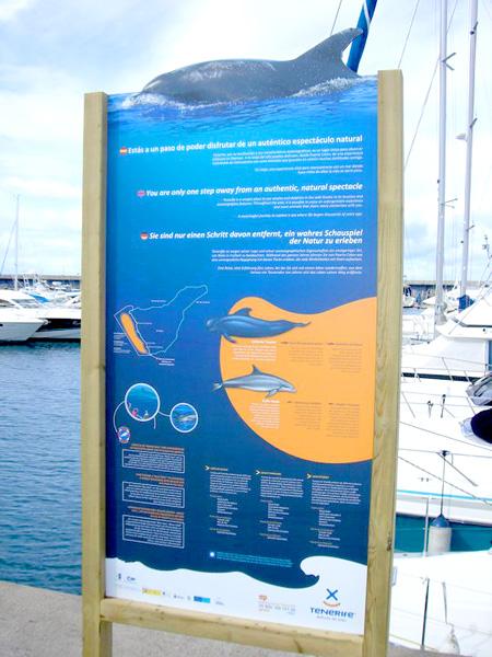 Info-Board im Hafen