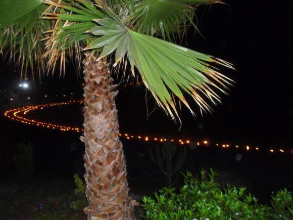 Feuerzauber in der Bucht von La Caleta bei Garachico.