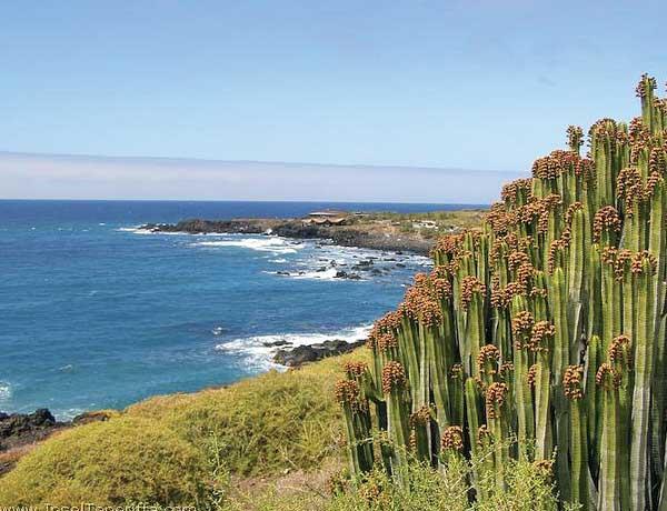 Unterhalb der Steilküste von Buenavista del Norte gibt es mehrere wildromantische, steinige Badebuchten.