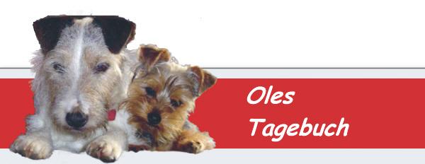 Ole & Chorri – Folge 111